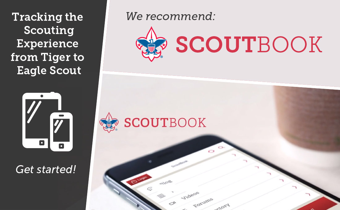 The Influence of Scout life essays